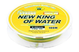 Плетеная леска New King Of Water Multicolor 100м, 0.22, 13.6кг